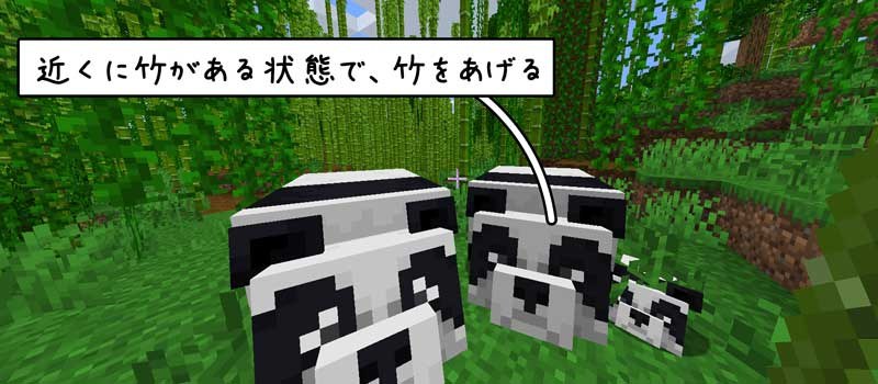 パンダの繁殖方法